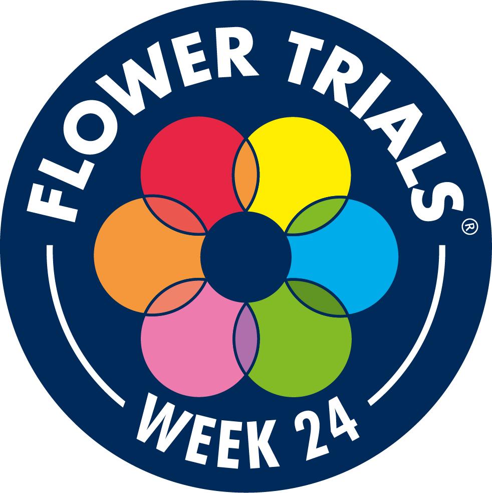 Flower Trails 2021