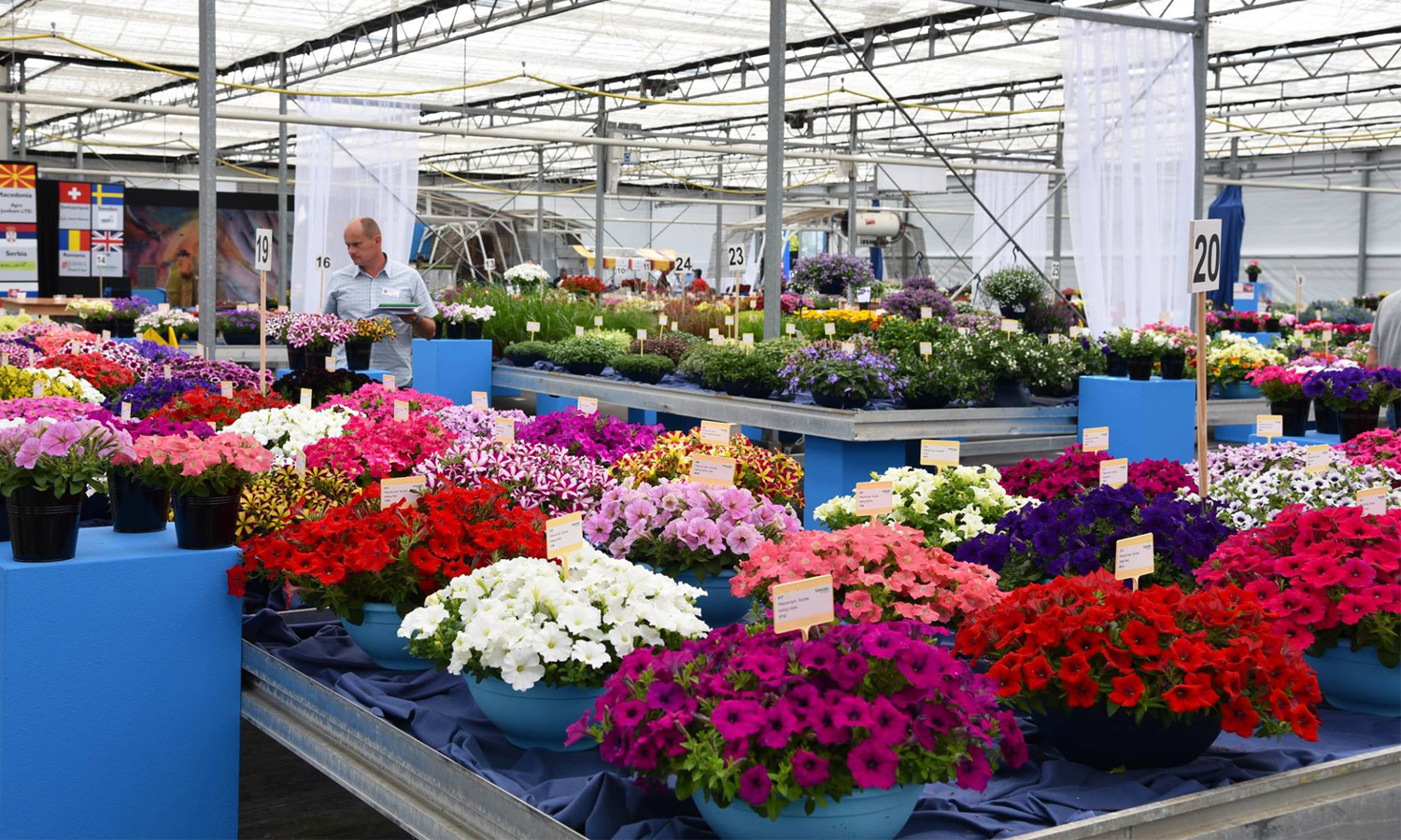 Are you ready? Flower Trials 2019!