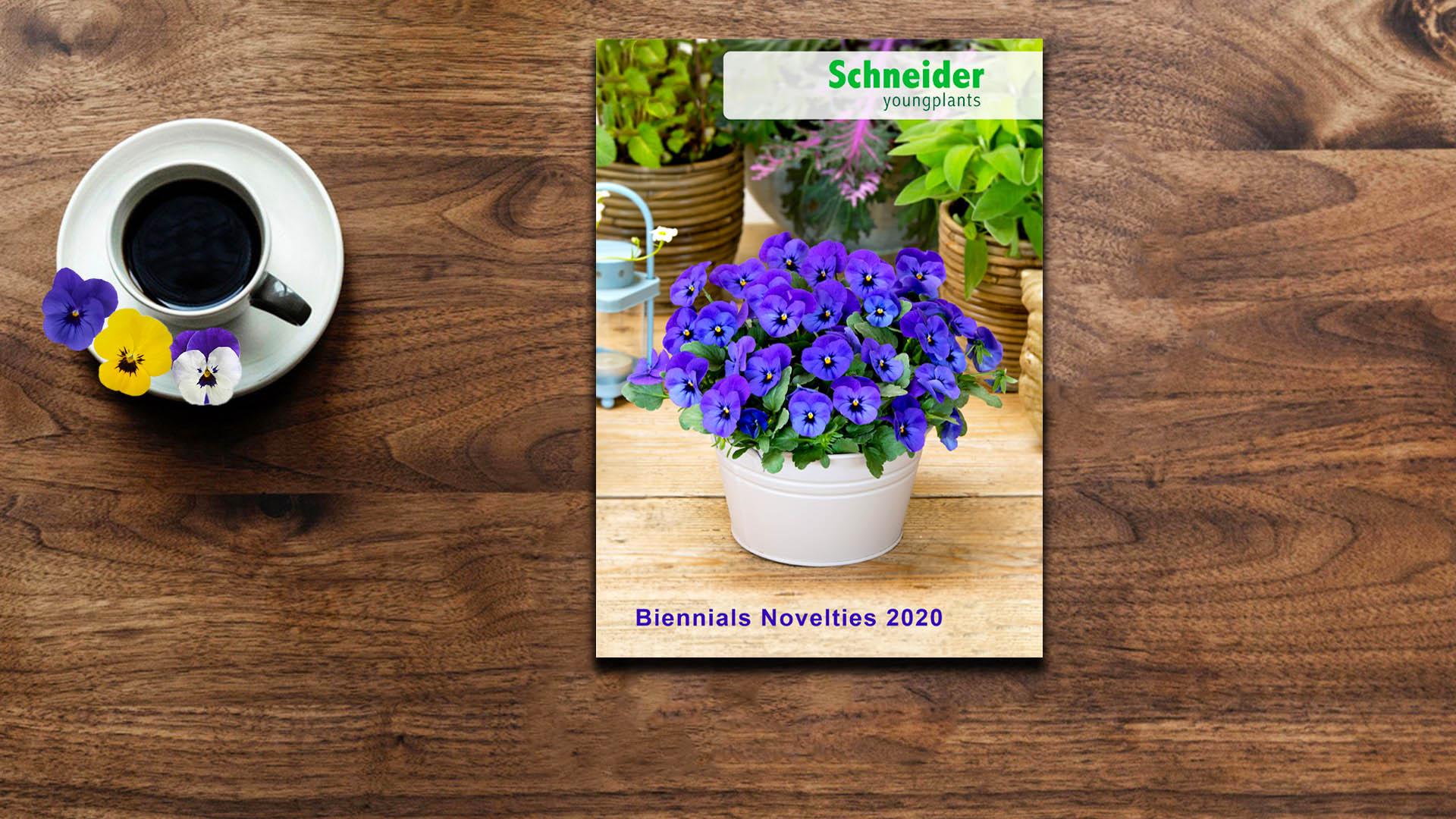 New Biennials Novelties 2020 catalogue!
